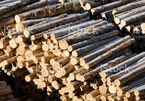 Holz Keespe aus Bochum